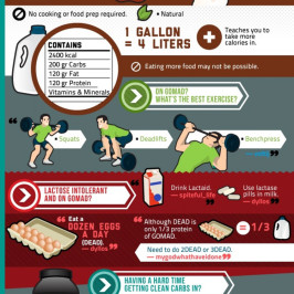 Broscience Guide to Fitness