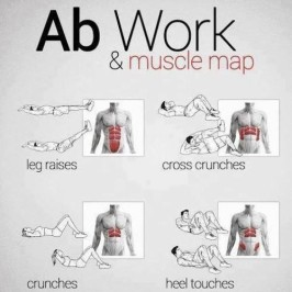 Ab Muscle Map